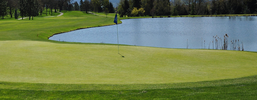ogcsa golf course superintendent association